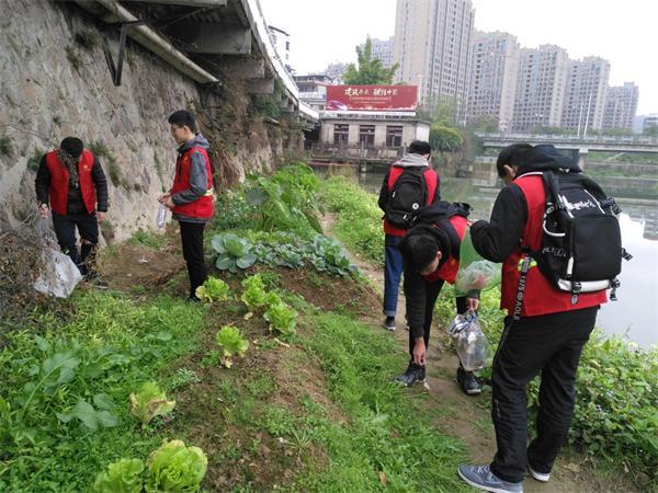 东坡社区关工委组织青年志愿者清理河道垃圾